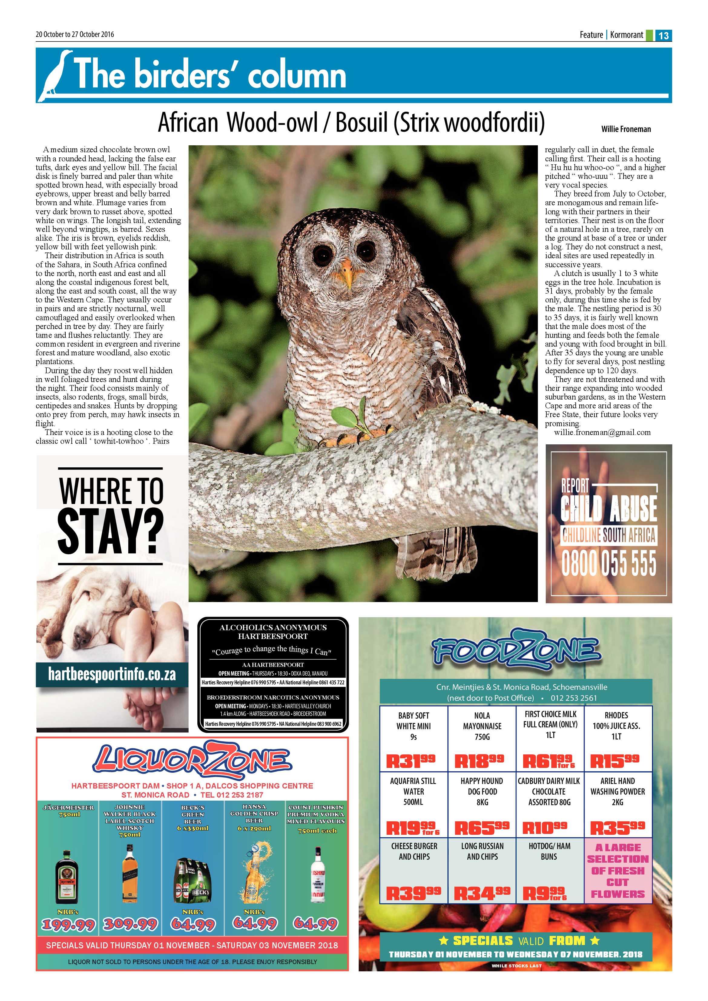 1-november-2018-epapers-page-13